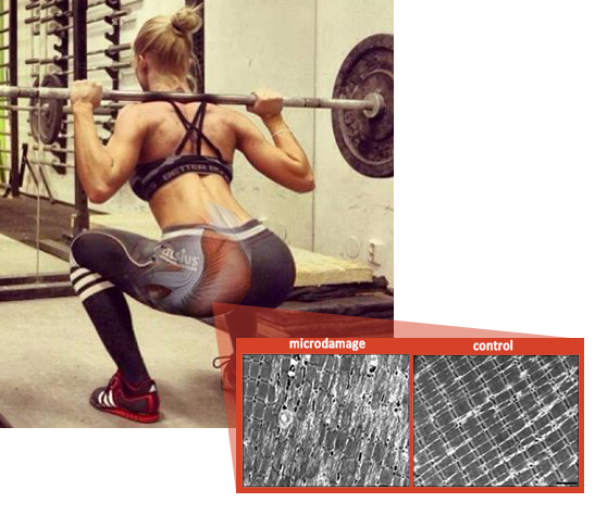 deep_squat_woman_muscle_damage